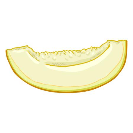 Vector Cartoon Yellow Piece of Melon