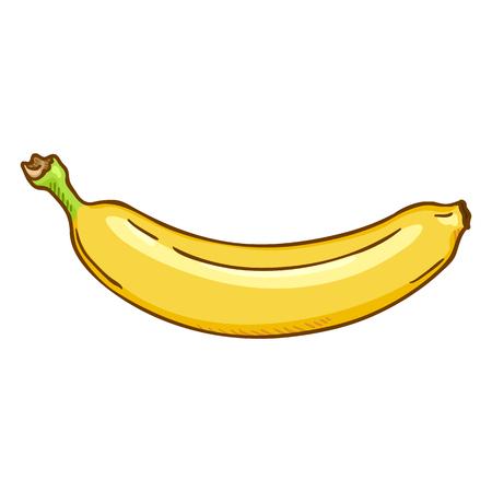 Vector Single Cartoon Yellow Banana