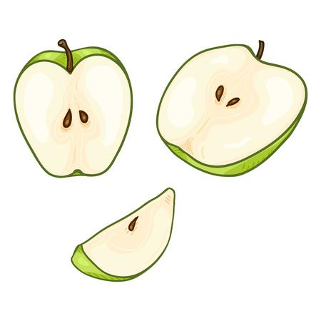 Vector Set of Cartoon Green Apple Cut Pieces
