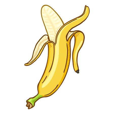 Vector Cartoon Peeled Yellow Banana