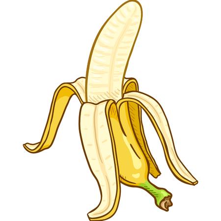 Vector Cartoon Peeled Banana Ilustração