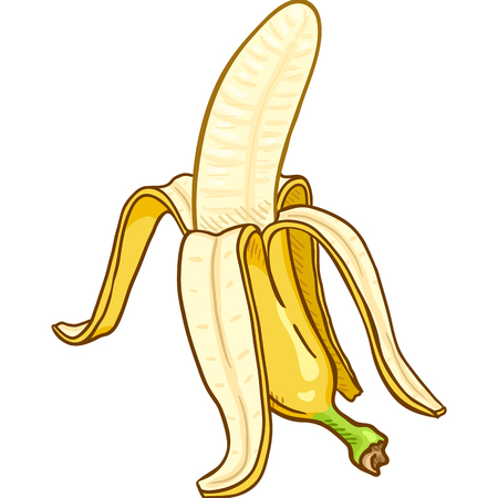 Vector Cartoon Peeled Banana 向量圖像