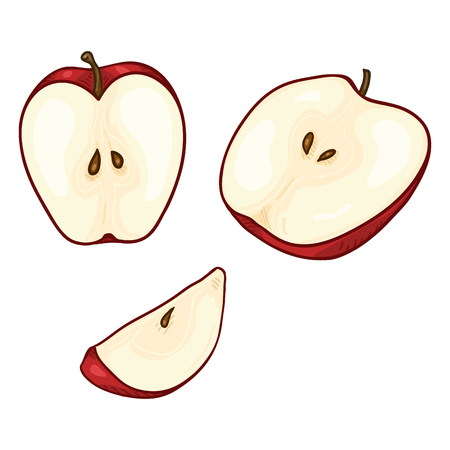 Vector Set of Cartoon Red Apple Cut Pieces Illustration