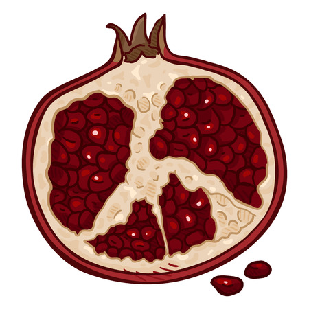 Vector Cartoon Half of Pomegranate with Red Seeds Ilustracja