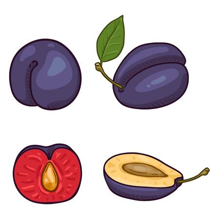 Vector Set of Cartoon Plum Illustrations