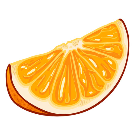 Vector Cartoon Orange Fruit Slice.