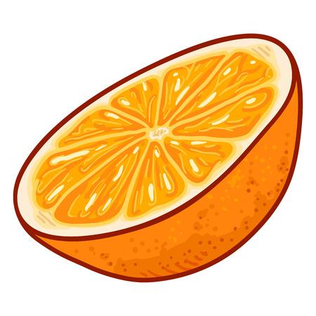 Vector Cartoon Half Cut of Orange Fruit Illustration