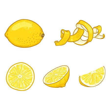 Vector Set of Cartoon Lemon Fruits. Whole, Peeled and Sliced