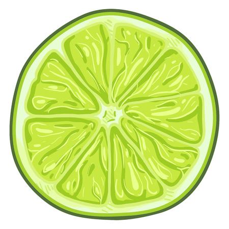 Vector Cartoon Green Lime Round Slice.