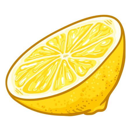Vektor-Cartoon-halber Schnitt von gelber Zitrone