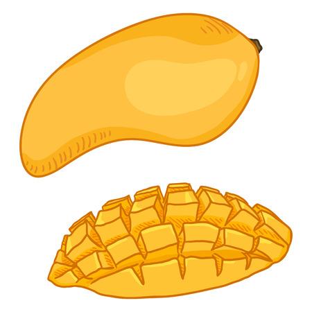 Vector Cartoon Yellow Mango Fruit. Whole and Sliced.