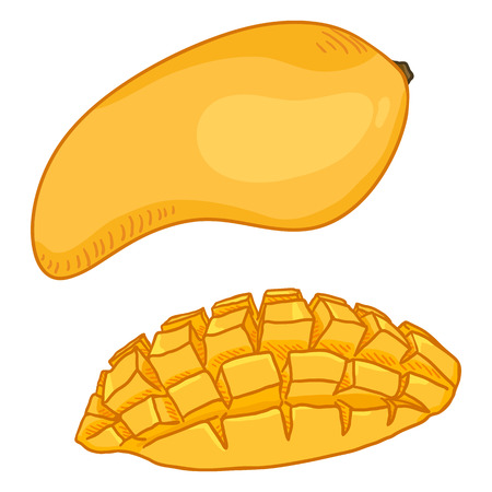Vector Cartoon Yellow Mango Fruit. Whole and Sliced.