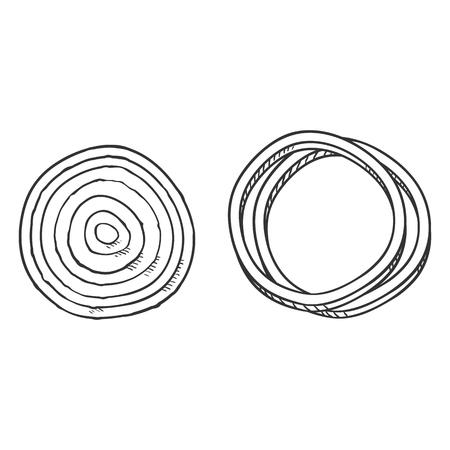 Vector Sketch Onion Round Slices