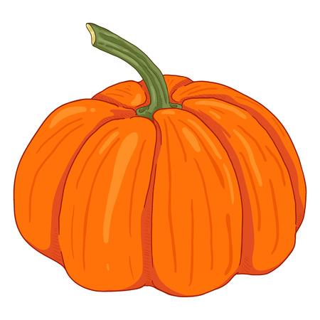 Calabaza naranja de dibujos animados solo vector