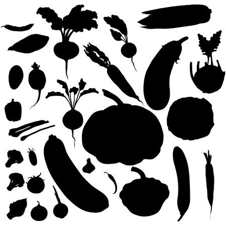 Vector Set of Black Vegetables Silhouettes Ilustração