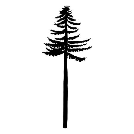 Vector Black Silhouette of Tall Pine Tree Vetores