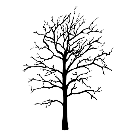 Vector Black Silhouette of Single Bare Tree Ilustração