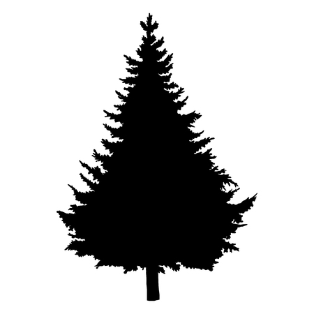 Vector Single Black Silhouette of Pine Tree Illustration
