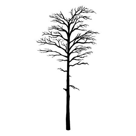 Vector Black Silhouette of Bare Tree