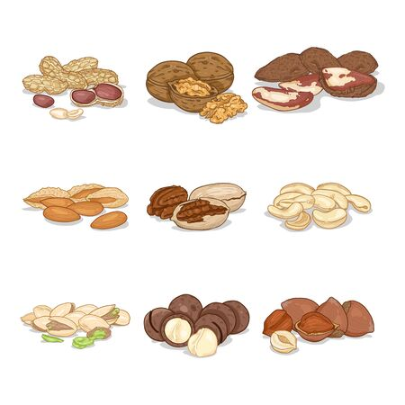 Cartoon Set of Nuts in Piles. Healthy snack. Organic Food Ilustração Vetorial