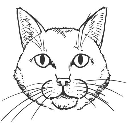 Vector Sketch Cute Cats Portrait. Feline Face Illustration.