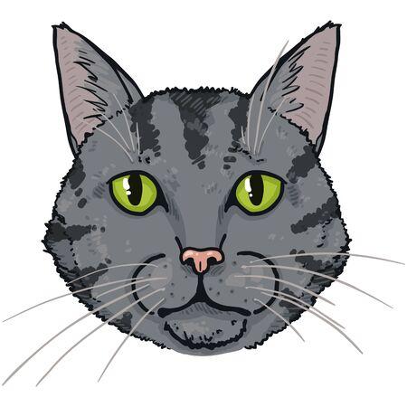 Vector Cartoon Tabby Cat Portrait. Feline Face Illustration.