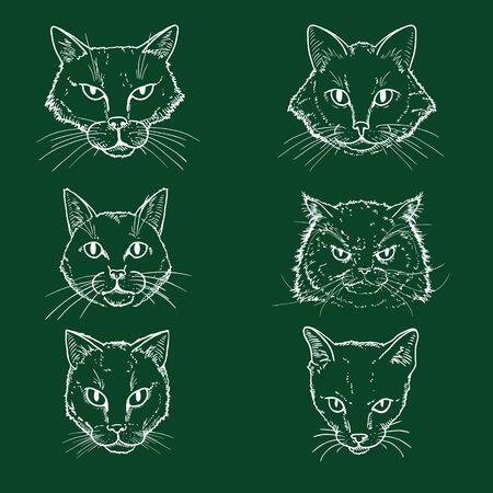 Vector Set of Chalk Sketch Cats Faces. Feline Portraits. Vector Illustration