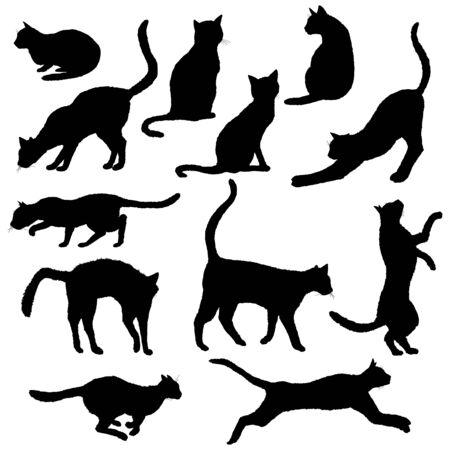 Vector Cats Silhouettes. Black Feline Outline Logos on White Background