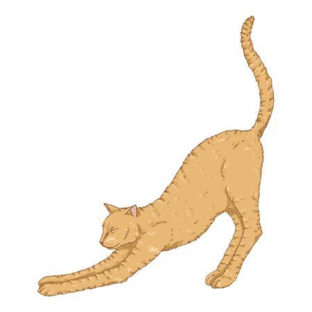 Stretching Cat. Vector Cartoon Brown Feline Illustration Çizim