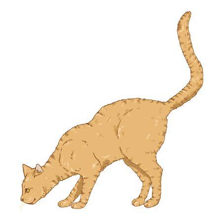 Sniffing Cat. Vector Cartoon Feline Illustration Ilustração