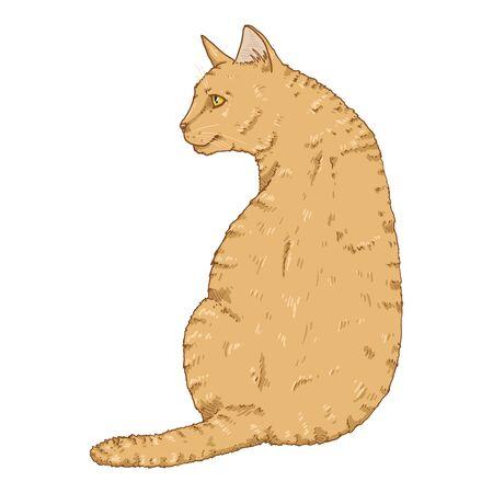 Sitting Cat. Vector Single Cartoon Feline Illustration