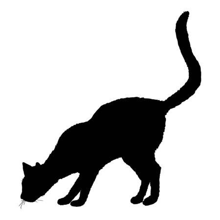Sniffing Cat SIlhouette. Vector Black Feline Logo. Illustration