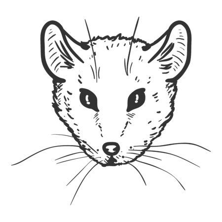 Vector Hand Drawn Sketch Mouse Portrait Иллюстрация