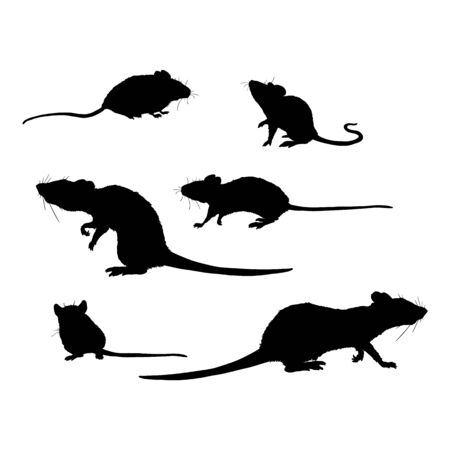 Vector Set of Rats and Mouses Black Silhouettes on Isolated White Background