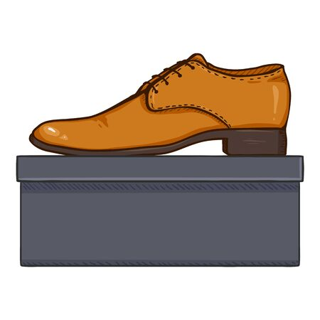 Vector Cartoon Brown Leather Classic Men Shoes with Shoebox