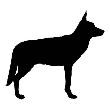 Vector Black Silhouette Standing German Shepherd Dog Illustration