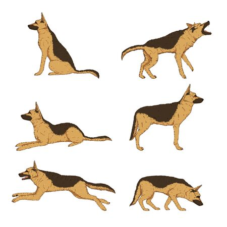 Vector Set of Cartoon German Shepherd Dog Illustrations