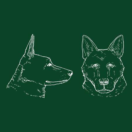 Chalk Sketch German Shepherd Dog Face Vector Illustration.
