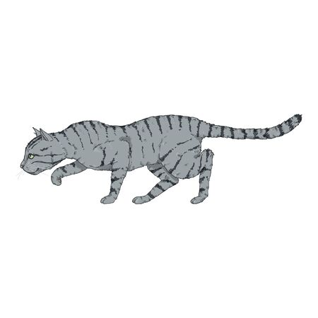 Sneaking Gray Striped Cat. Vector Cartoon Illustration