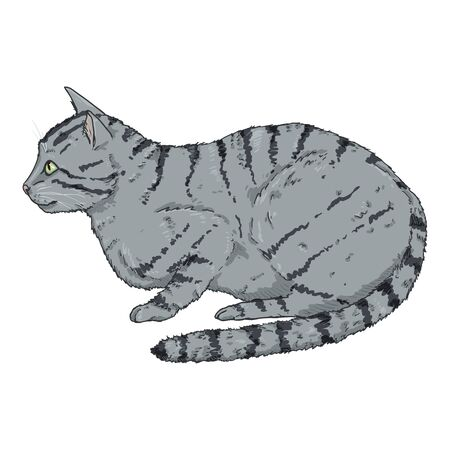 Gray Striped Cat. Vector Cartoon Illustration