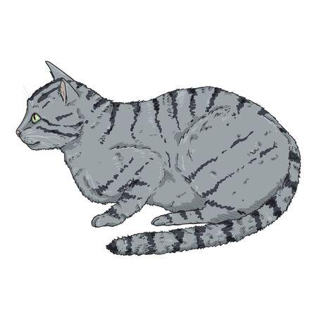 Gray Striped Cat. Vector Cartoon Illustration
