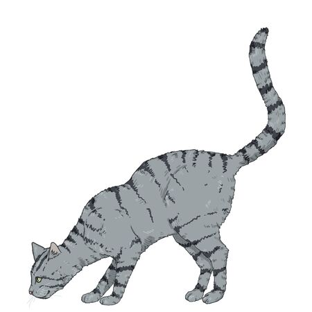 Sniffing Gray Striped Cat. Vector Cartoon Illustration