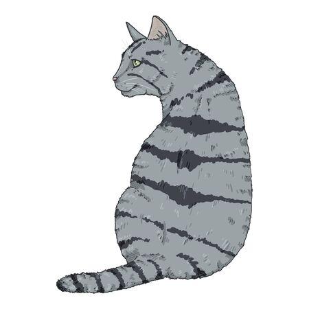 Sitting Gray Striped Cat. Vector Cartoon Illustration Reklamní fotografie - 138389515