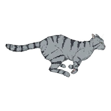 Ejecución de gato gris a rayas. Ilustración de dibujos animados de vector Ilustración de vector