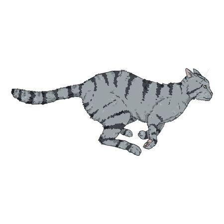 Running Gray Striped Cat. Vector Cartoon Illustration Illustration