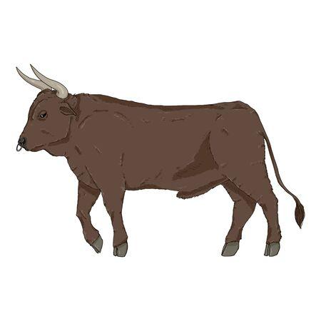 Cartoon Bull. Vector Color Illustration. Side View.  イラスト・ベクター素材