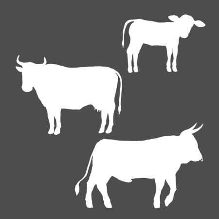 Vector Set of Cattle Silhouettes. Farm Animals Illustration. Calf, Cow and Bull
