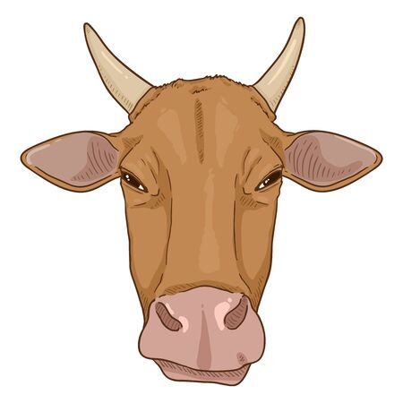 Cartoon Cow Head. Vector Cattle Illustration. Front View.