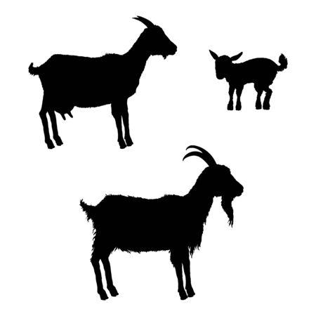 Black Silhouettes of Goats. Vector Set Illustrations. Ilustración de vector