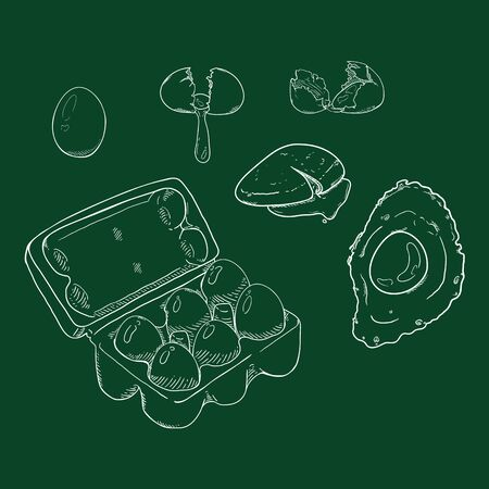 Vector Chalk Sketch Set of Eggs. Raw and Cooked Egg Illustration. Illustration
